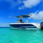 Gem Charters -  Day  Tours