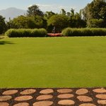 Beautiful lawn perfect for relaxing or attending a yoga class