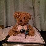Teddy having a read