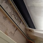 Mold above window