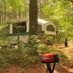 Foto van Pinewood Lodge Campground