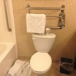 Φωτογραφία: Holiday Inn Birmingham-Hoover