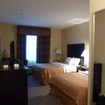 Microtel Inn & Suites by Wyndham Breaux Bridge照片