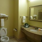 Microtel Inn & Suites by Wyndham Breaux Bridge resmi
