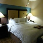 Φωτογραφία: Hampton Inn and Suites Charlotte Airport