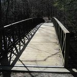 Bridge on the Walking / Biking Trail