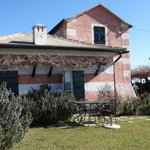 Photo of B&B la Natta di Monte Tabor