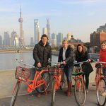 Wheely Bike Tours