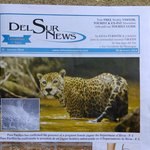 The Del Sur News