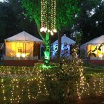The Aravali Tent Resort