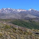Mount Ruapehu from the West