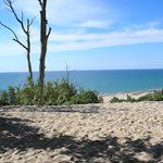 The view from Tower Hill - Warren Dunes State Park