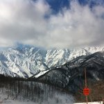 Фотография Elk at Hakuba
