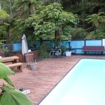 Pool & spa backed by forest, viewed from room