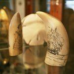 Artfacts made of elephant trunks