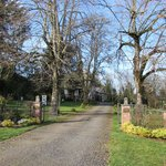 Dundee Manor Bed and Breakfastの写真