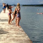 Kids jumping off the dock !!!