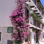Photo of Albergo ai 4 Camosci