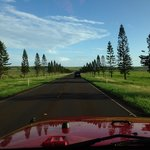 road into lanai from harbor