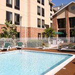 Hampton Inn & Suites Tarpon Springs Foto