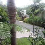 Photo de BIG4 Airlie Cove Resort & Caravan Park