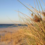 Coastal scene at Jurien Bay