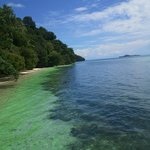 Φωτογραφία: Raja Ampat Dive Resort