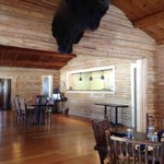 Dining under the Moose