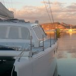 Island Cat - Private Day Charters