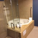 Φωτογραφία: Holiday Inn Houston East-Channelview