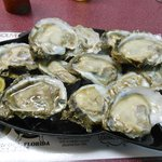 Apalachicola oysters, the best!!