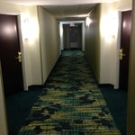 Φωτογραφία: SpringHill Suites by Marriott Florence