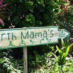 Earth Mama's Garden Cafe & Lifestyle