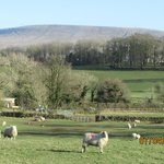 Looking towards Pendle Hill. Lots of good walks from the hotel.