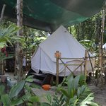 Photo of Palmar Tent Lodge