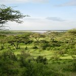 Foto van Serengeti Halisi Camp