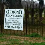 Bilde fra Ormond Plantation Manor House