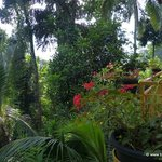 Photo de Sujatha's Homestay