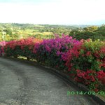 Finca Vibran Bed and Breakfast Foto