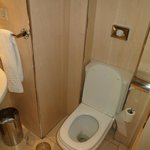 Toilet (Bathroom without Bidet)