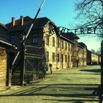 Auschwitz Private & Group Tours