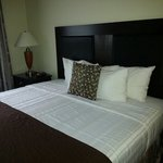 Foto de BEST WESTERN PLUS Castlerock Inn & Suites