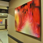 Bold artwork provide splashes of color in hallways.