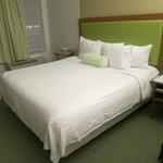 SpringHill Suites Houston Intercontinental Airport照片