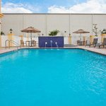 La Quinta Inn & Suites Tampa Central resmi