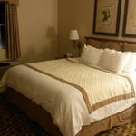 Presidential suite bed- feels like your floating on clouds when you sleep in this bed. Clean and