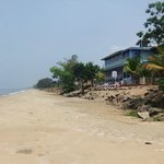 Sea Line Beach Resort, Cherai resmi