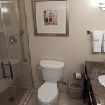 Φωτογραφία: Hilton Garden Inn Dulles North