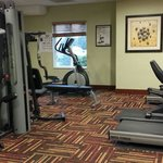Φωτογραφία: Holiday Inn Express Suites Chehalis - Centralia