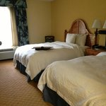 Φωτογραφία: Hampton Inn & Suites Savannah Midtown